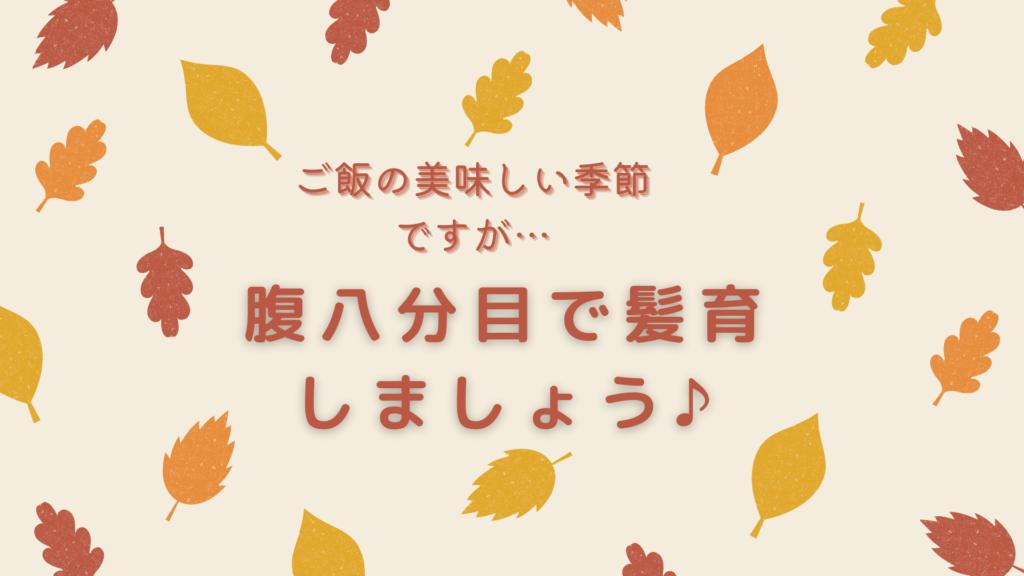 秋の抜け毛について